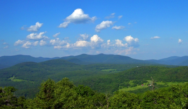 View_north_from_Red_Hill_Fire_Tower