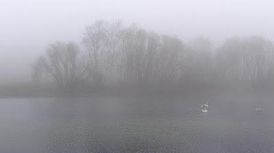 Foggy Lake 02
