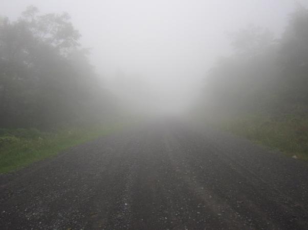 foggy_road_by_kdawg7736-d5dm8w9
